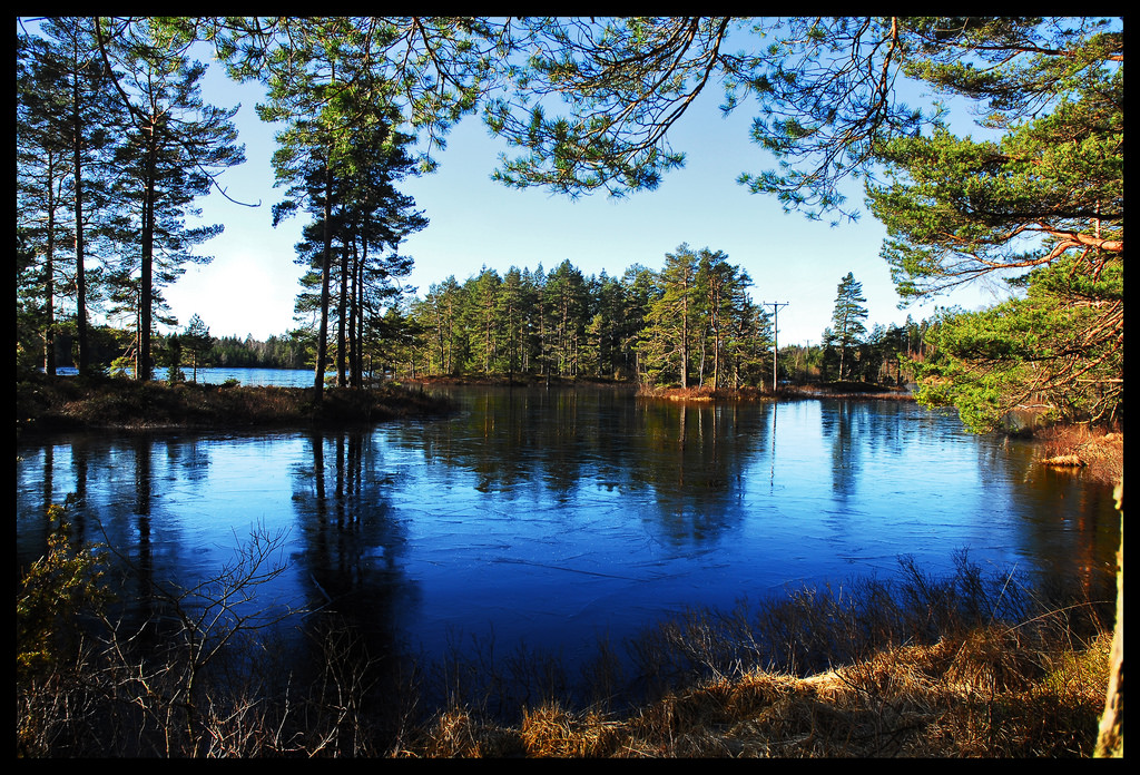swedish-forest-lake